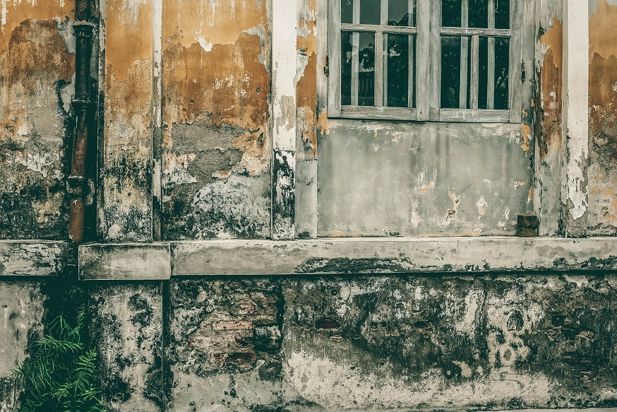 penyebab cat dinding mengelupas