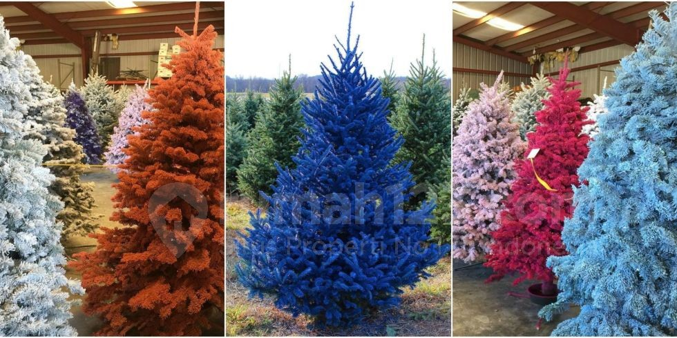 colourful-christmas-tree