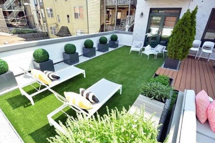 menanam rumput di atap rumah