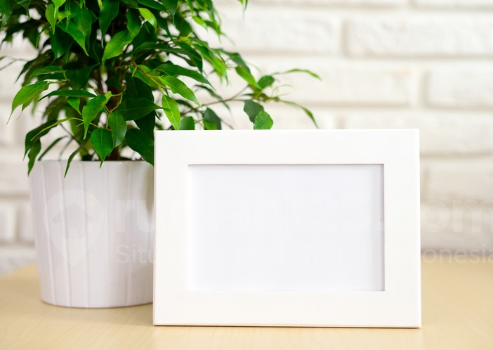 empty Picture Frame and flowers in a pot