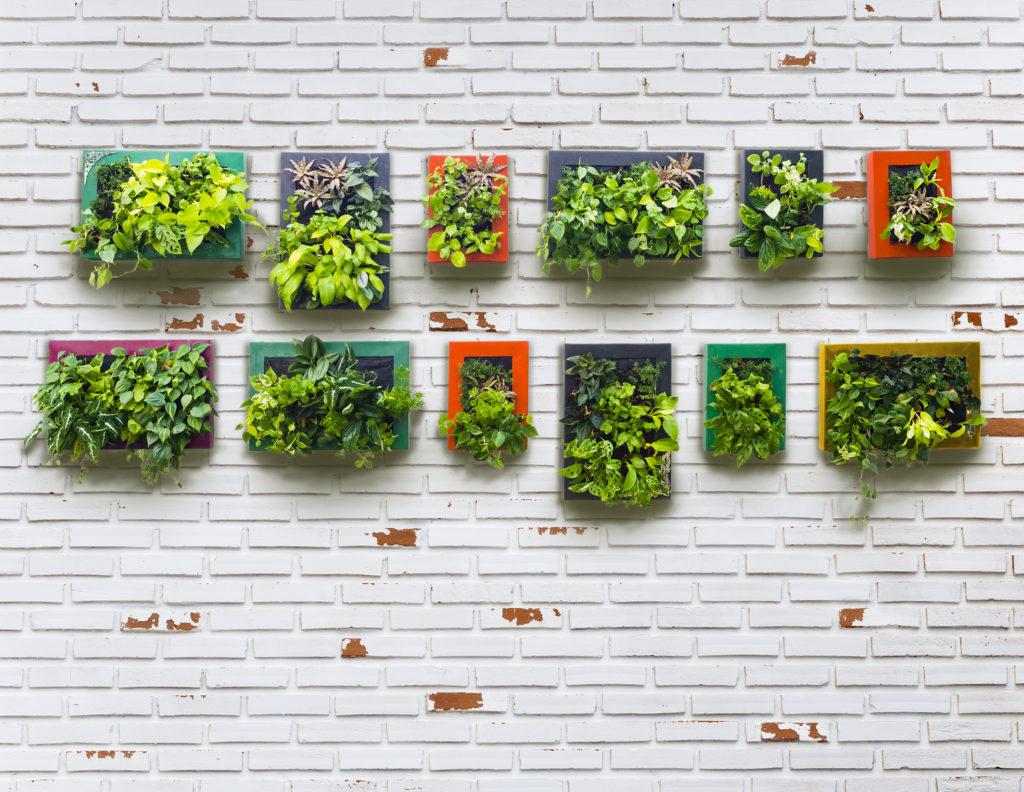 vertical garden - rumah123.com