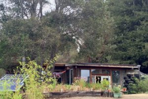 10 Potret Rumah Ramah Lingkungan | Material dari Daur Ulang, DIY, dan Rongsokan