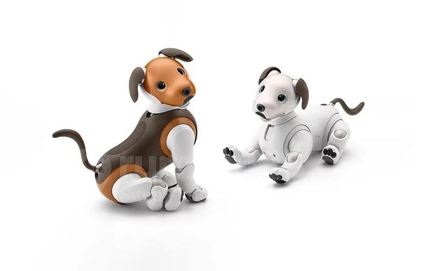 Ga Usah Khawatir Tinggalkan Rumah Kamu Bisa Memiliki Robot Anjing Penjaga Rumah123 Com