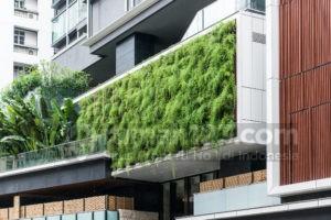 Vertikal Garden, Solusi Bercocok Tanam untuk Rumah dengan Lahan Terbatas