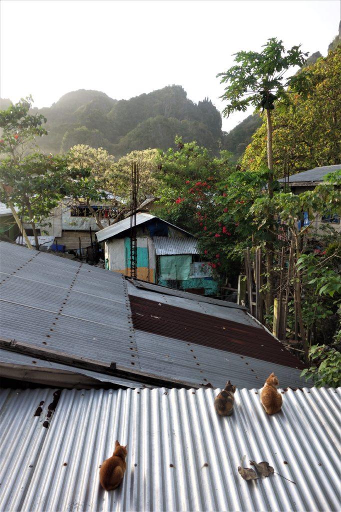 atap seng - rumah123.com