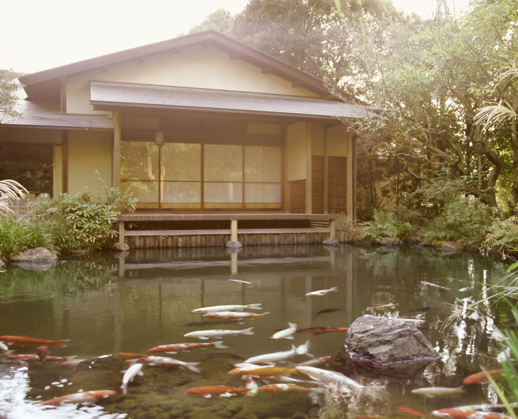 kolam ikan koi - rumah123.com