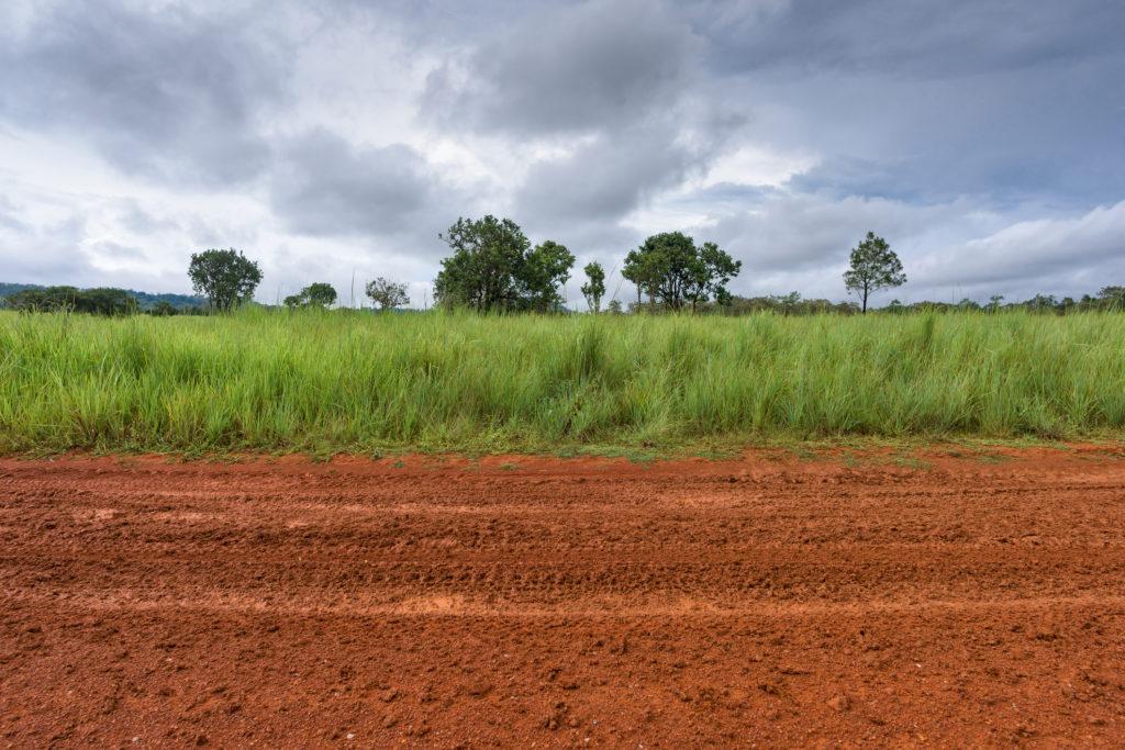 Jual beli tanah kosong berbeda dengan jual beli rumah - rumah123.com