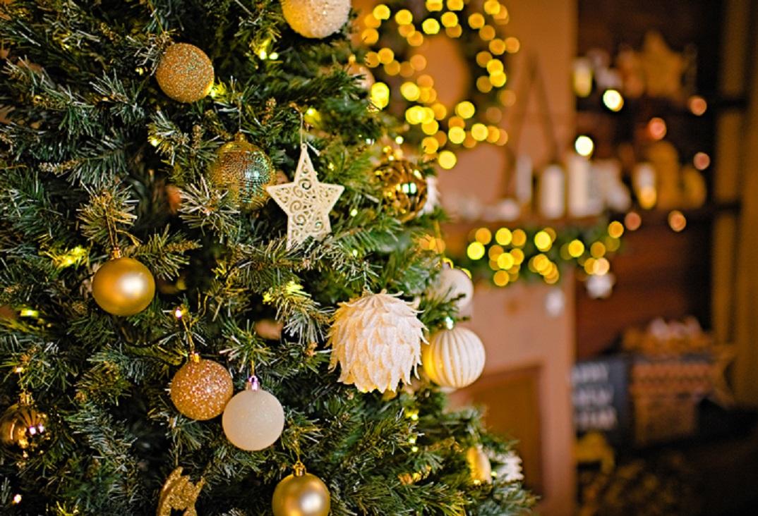 pohon natal- rumah123.com