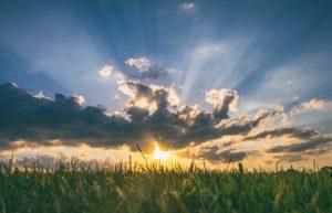 Manfaat Matahari Untuk Kehidupan Manusia, Ternyata Banyak Lho