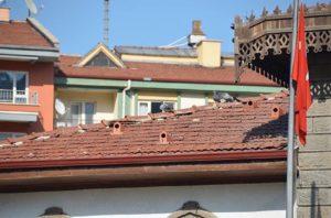 Desain Atap Unik, Atap Rumah Sekaligus Sangkar Burung