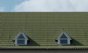 10 Kelebihan Atap Go Green | Alternatif Pilihan Atap untuk Rumah Kamu
