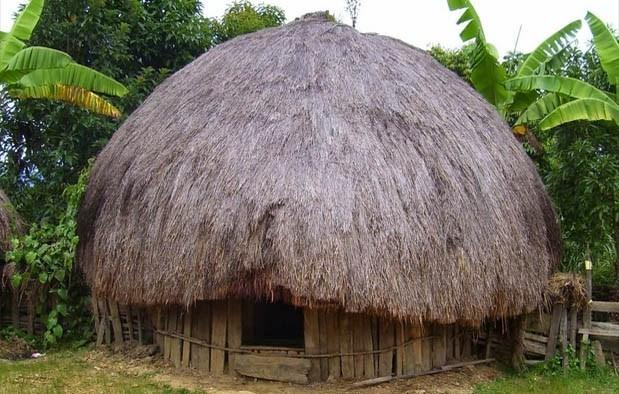rumah adat papua ebai