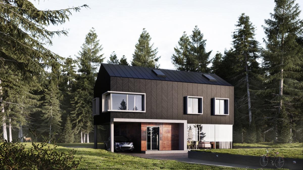 rumah minimalis gaya cabin