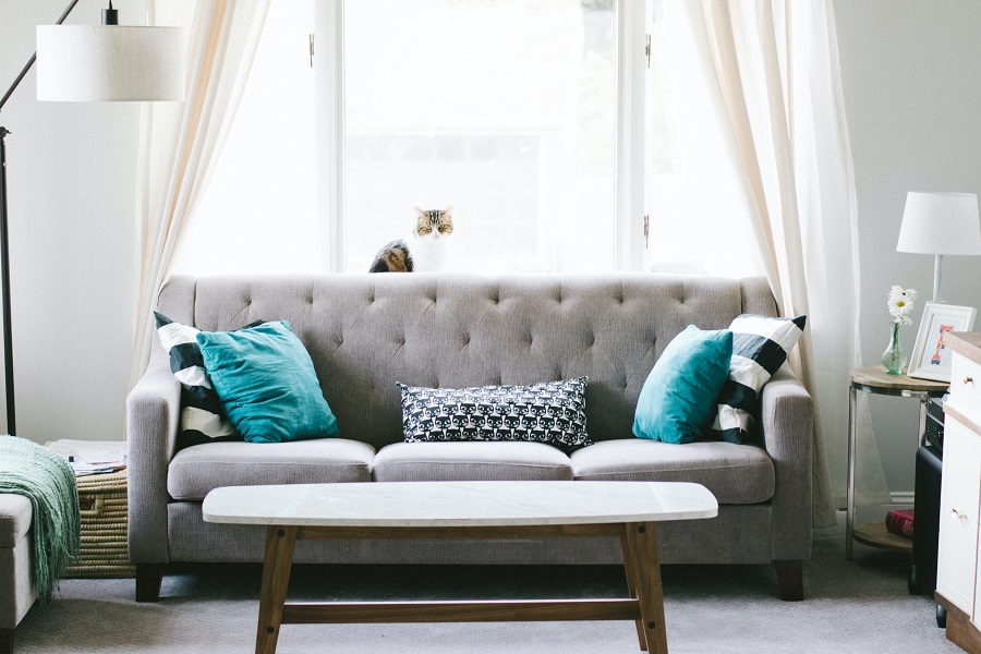 cara membersihkan sofa kain