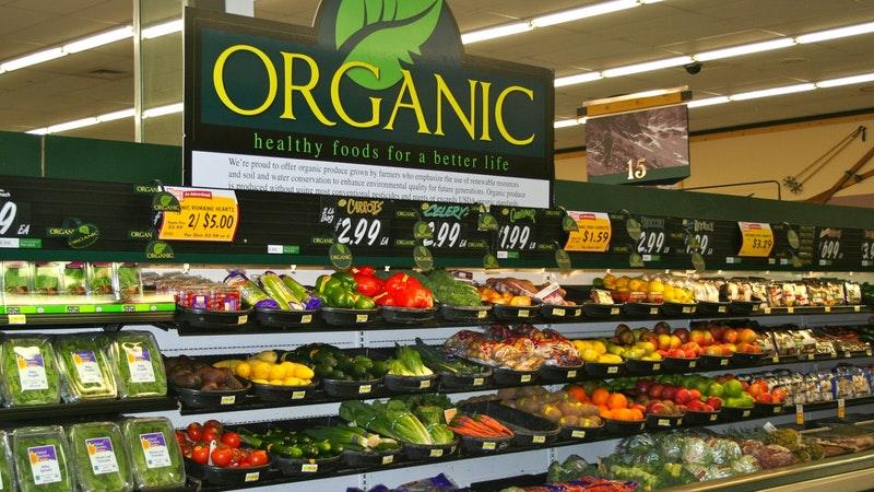 sayuran hidroponik organik