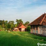 Aturan Hukum Tanah Absentee, Penting untuk Pemilik Lahan Pertanian!