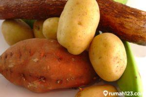 Kentang Hingga Singkong, Ini 7 Bahan Makanan Beracun yang Ada di Dapur Rumah