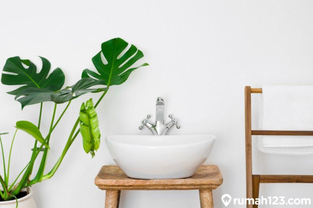 tanaman hias di kamar mandi