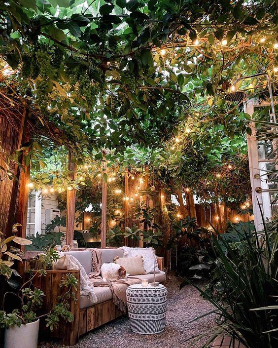 halaman belakang rumah