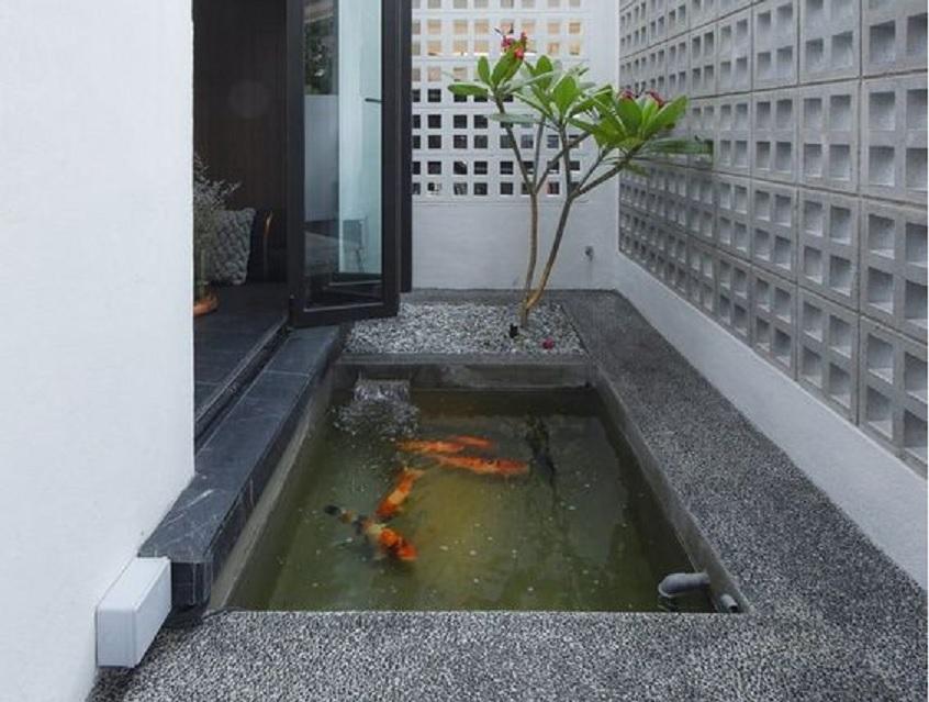 17 Inspirasi Kolam Ikan Depan Rumah Mau Kolam Minimalis Atau Desain Jepang Rumah123 Com