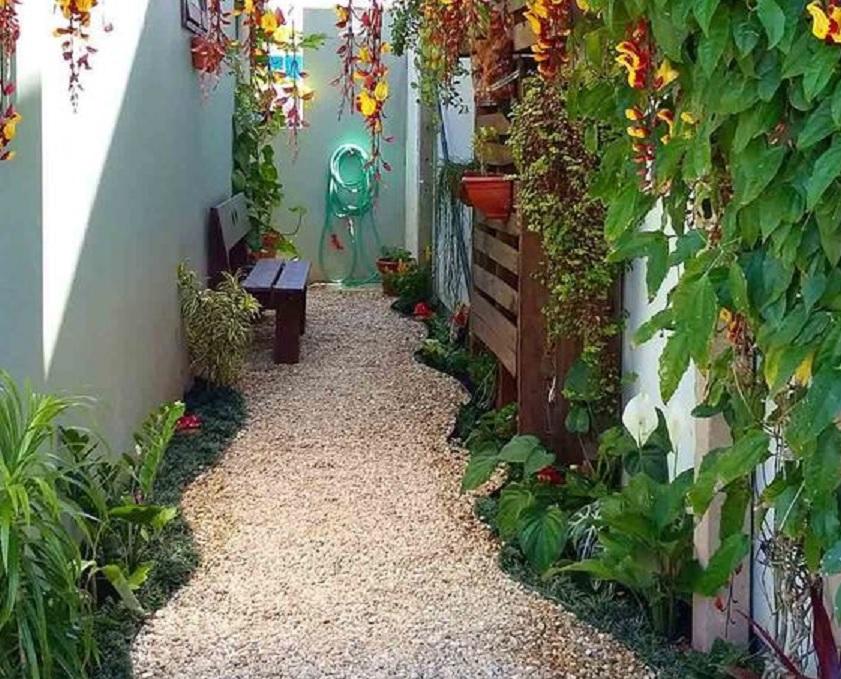 taman kecil samping rumah