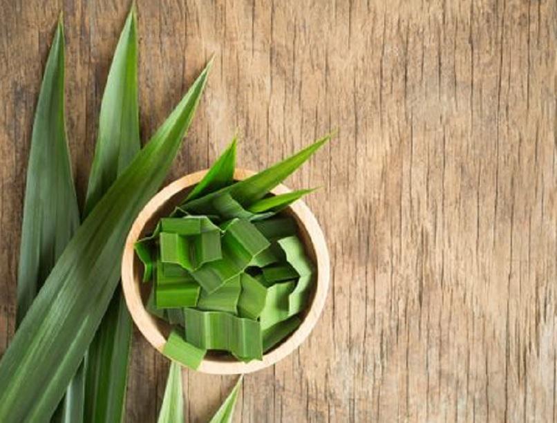 manfaat daun pandan