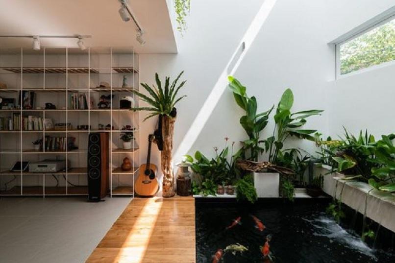 kolam ikan dalam rumah