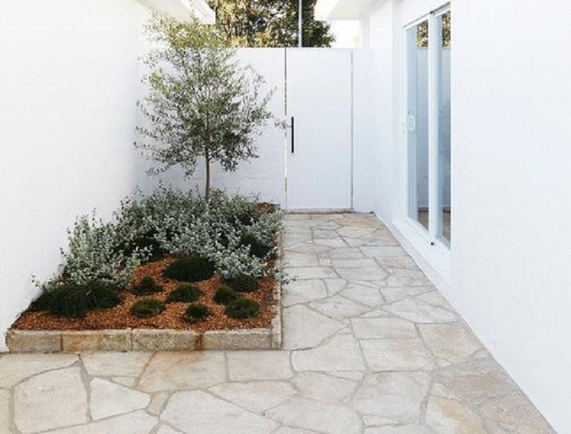 taman belakang rumah minimalis