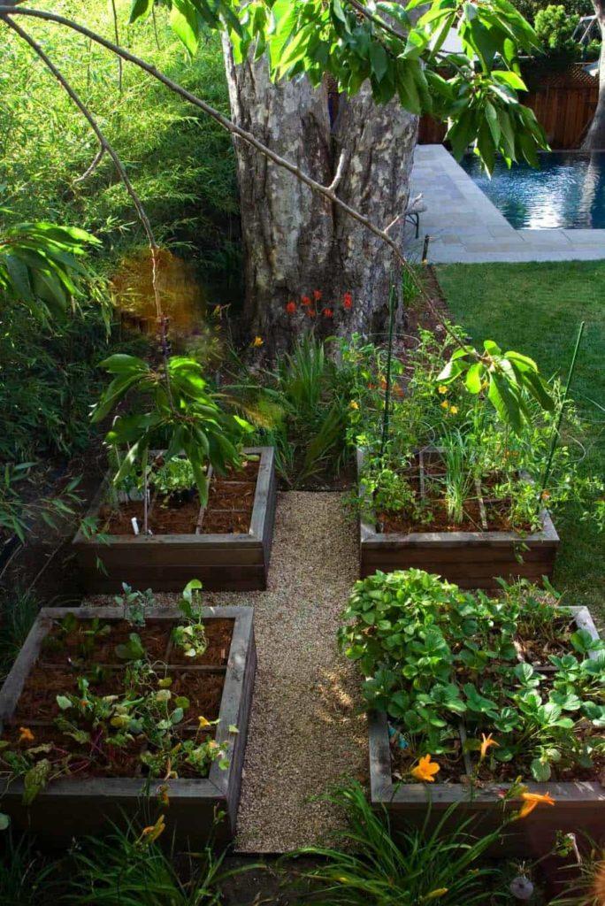 kebun rumah
