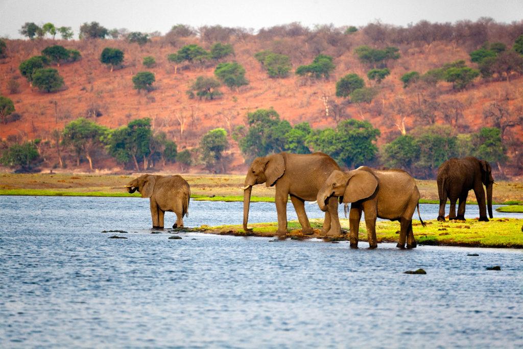 Botswana Afrika