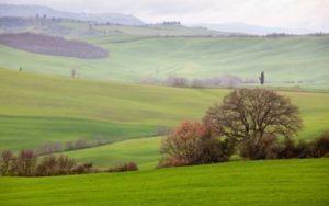 Mengenal Tanah Ulayat & Hubungannya dengan Tanah Negara dan Hak Milik