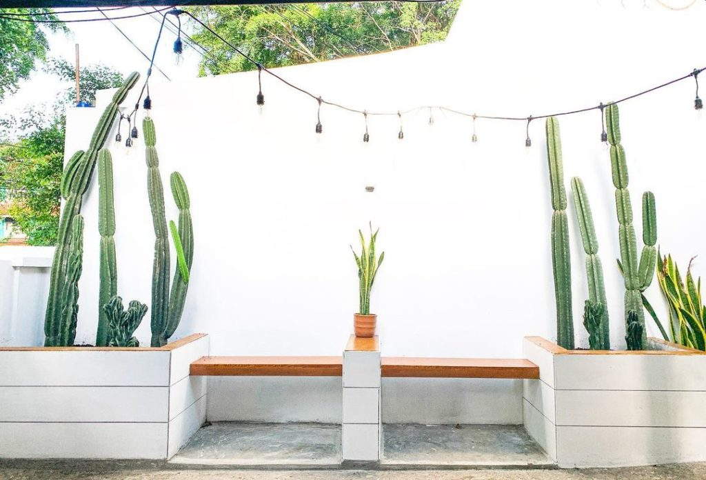 taman kecil kering minimalis