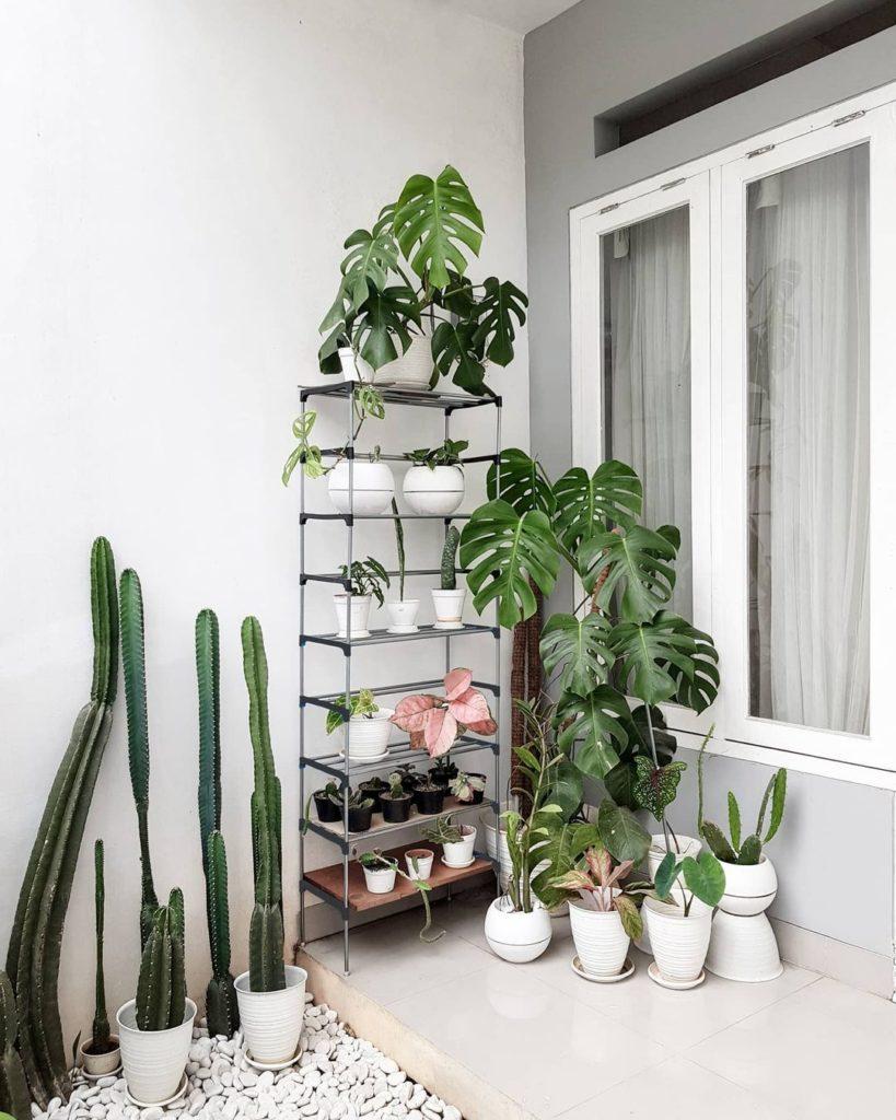 rak tanaman depan rumah