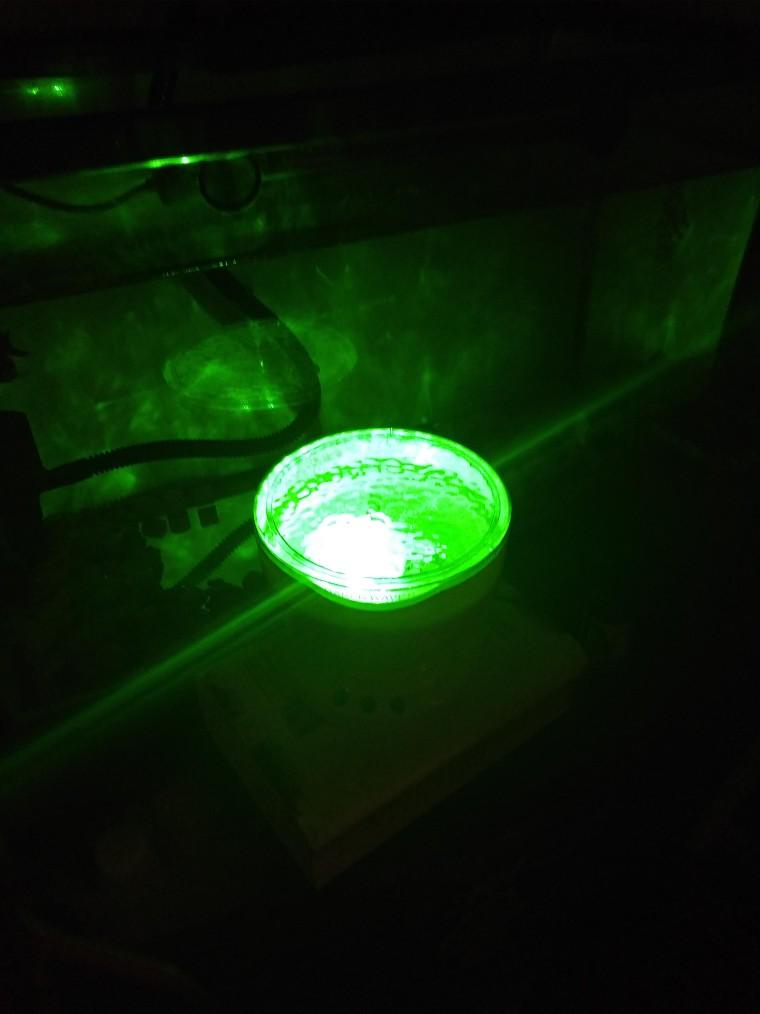lampu lautan