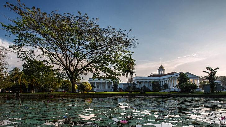 tinggal di Bogor