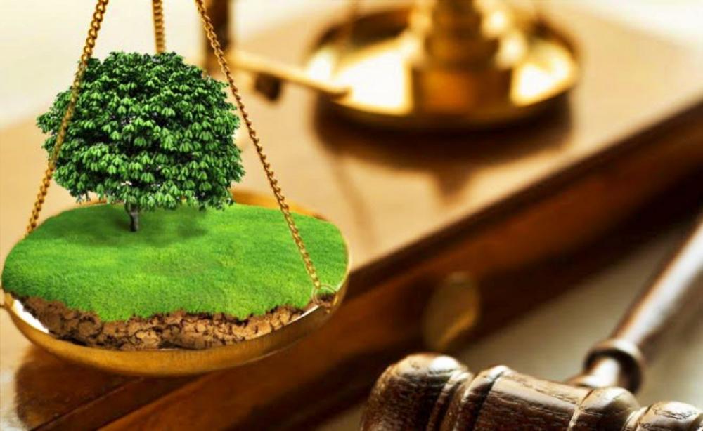 6-contoh-surat-pernyataan-kepemilikan-tanah-alat-bukti