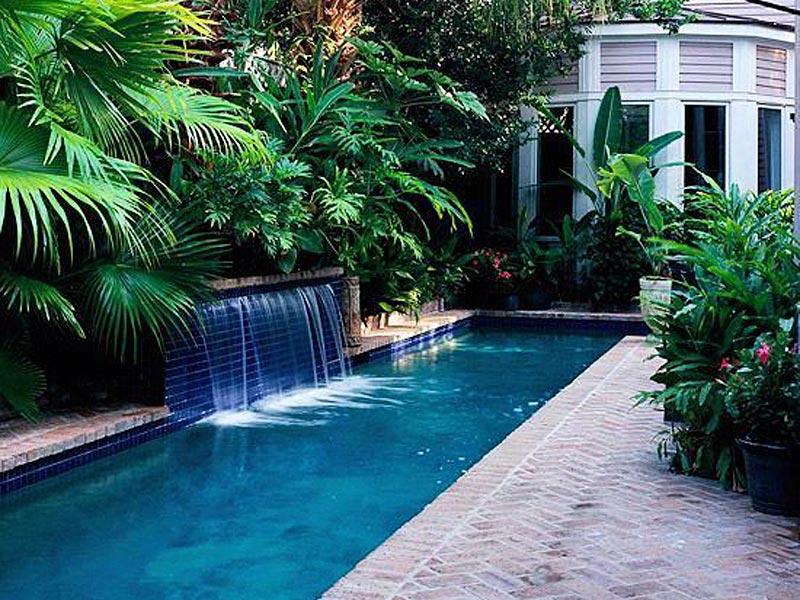 Inspirasi taman belakang gaya tropis, taman tropis mdoern