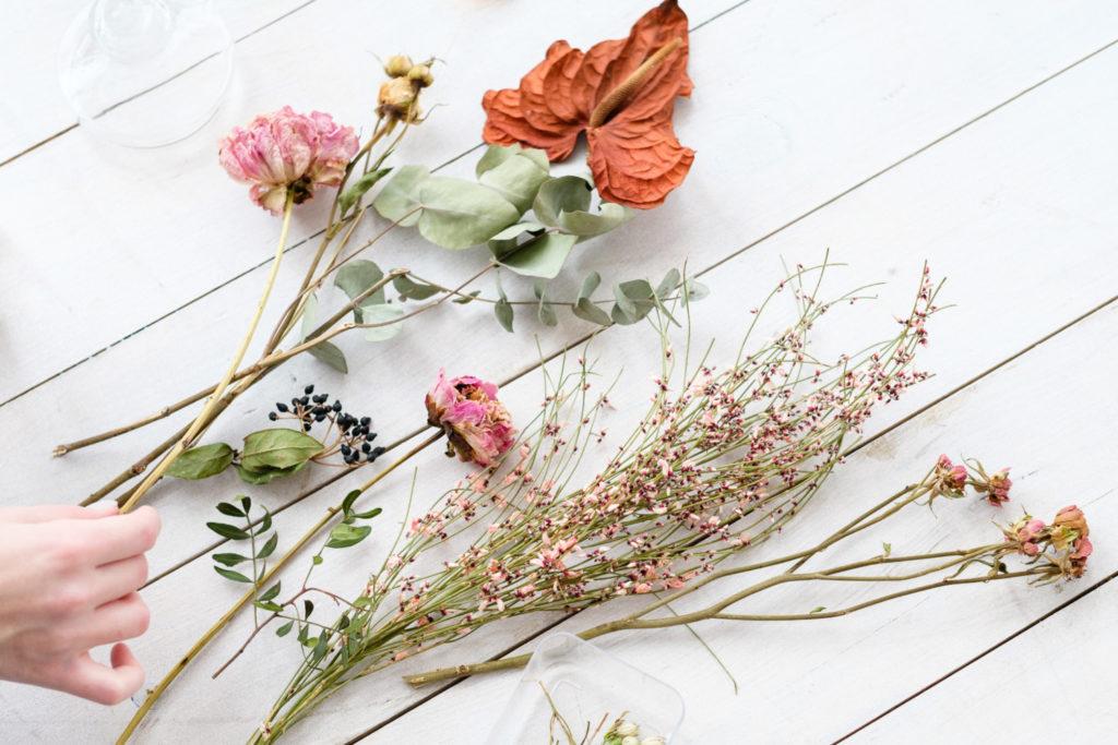 memilih bunga kering