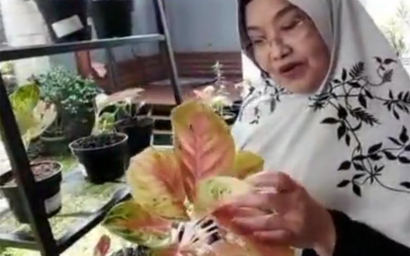 Siti Fadilah Supari