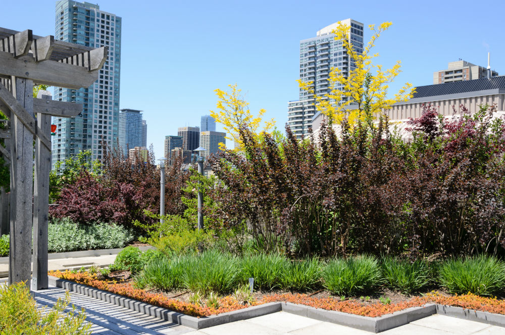 Desain Landscape Taman