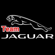 Jaguar Tim