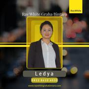 Ledya Stephy