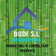 Budi SL US Pro