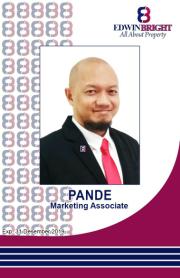 Pande Pambagyo