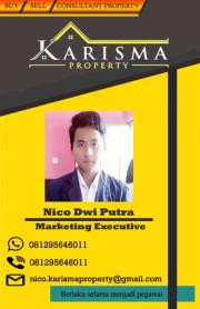 Nico karisma property