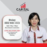 Delsy Capital