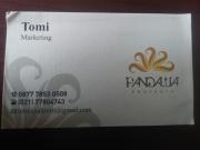 Tomi Pandawa