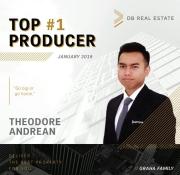 Theodore Andrean