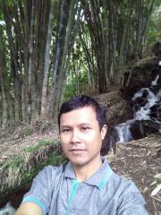 Darmawan widianto