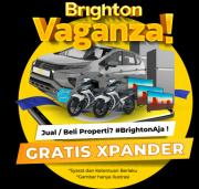 Ivo Brighton Golden